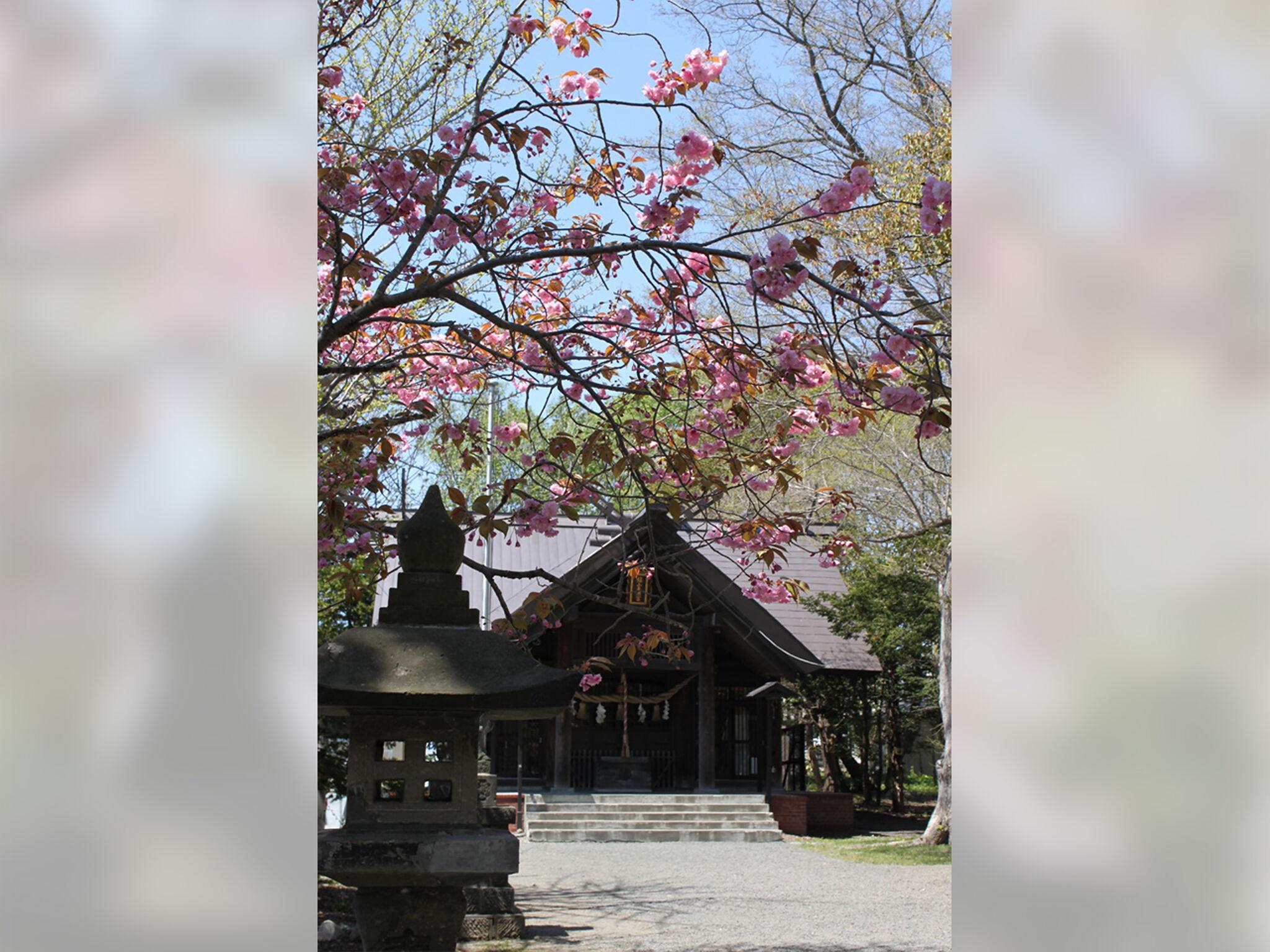 錦山天満宮_社殿内の画像