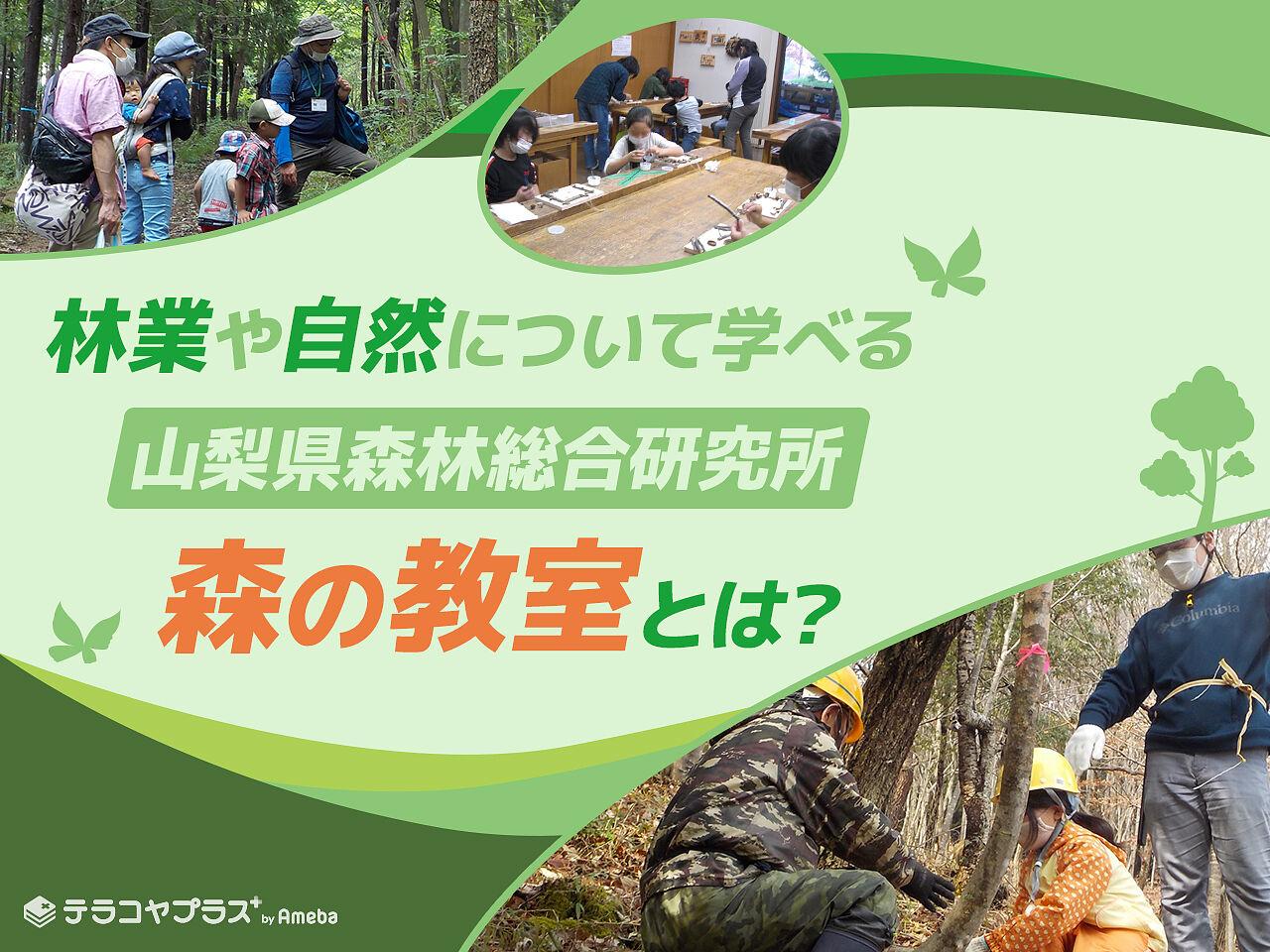 山梨県森林総合研究所「森の教室」を取材!体験を通して自然が学べる取り組みとはの画像