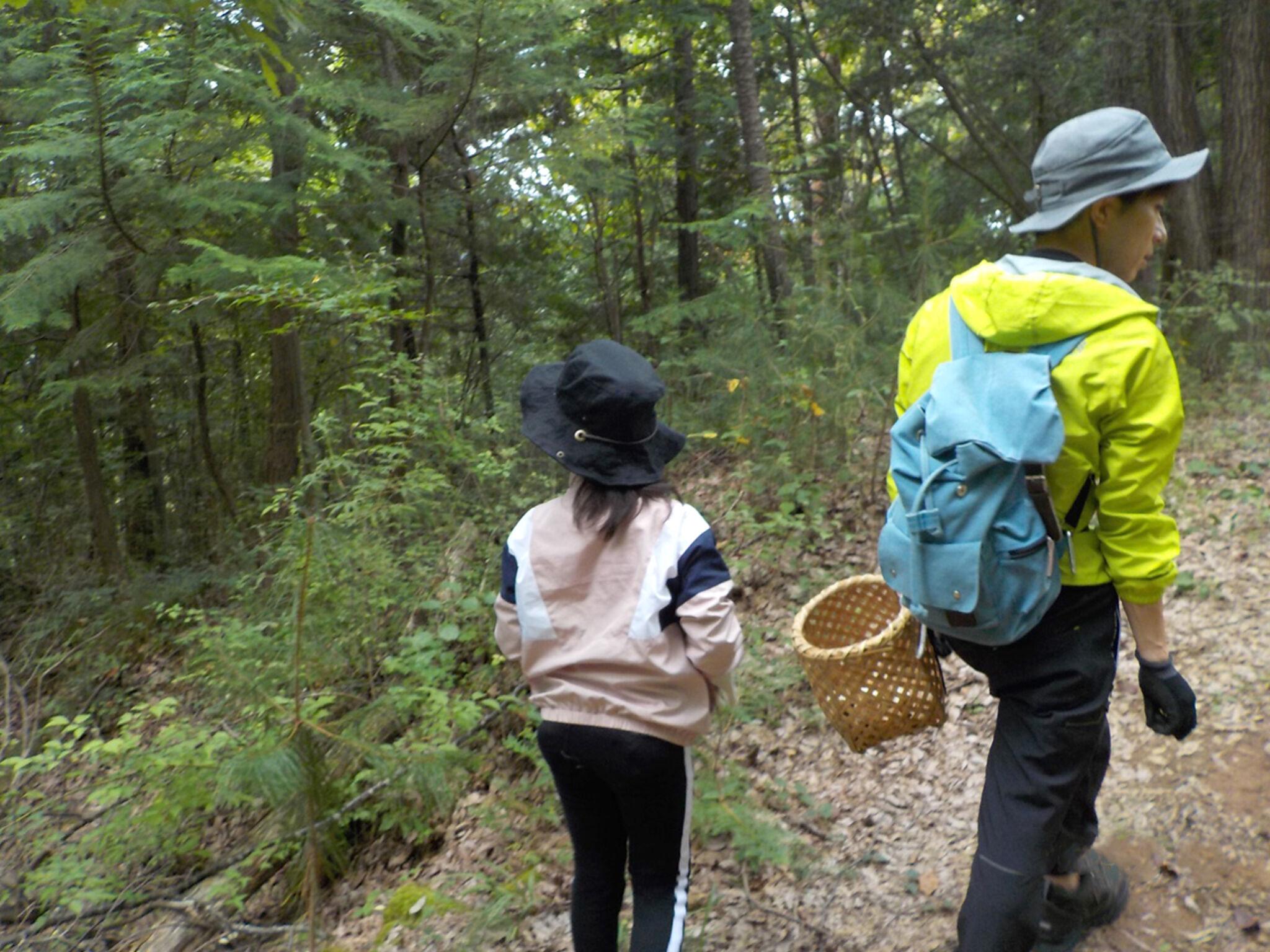 キノコ教室にて親子で森を歩いている画像