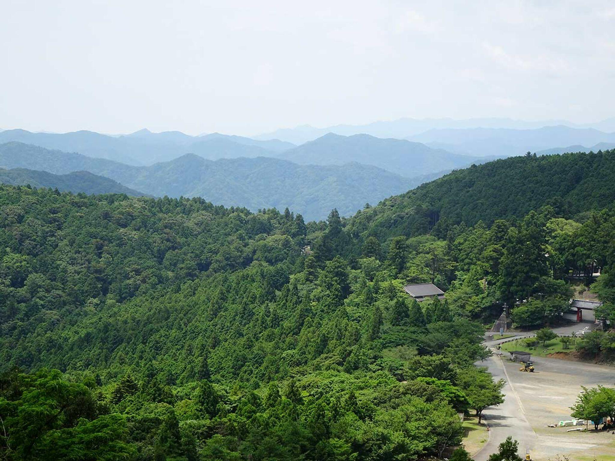 朝熊山から見た神宮宮域林の画像