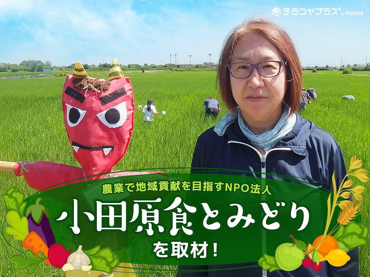 農業で地域貢献を目指すNPO法人「小田原食とみどり」を取材!親子で楽しめる農業体験とはの画像