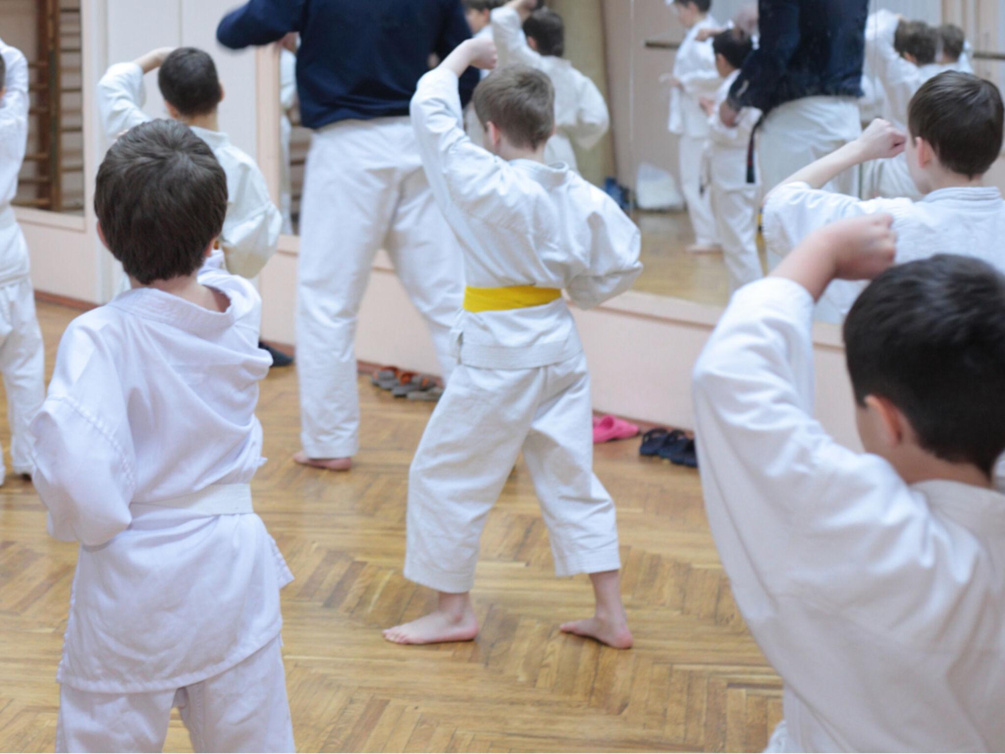 子どもたちが空手の指導を受けている画像